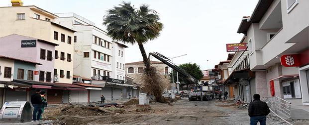 Kuşadası'nda palmiyeler Adagöl'ü süsleyecek