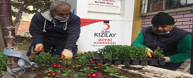Efeler Belediyesi muhtarlıkları çiçeklendirdi