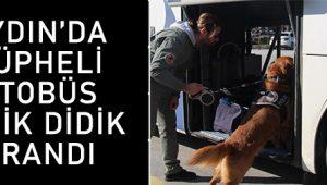 Aydın'da şüpheli otobüs didik didik arandı