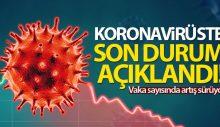 Türkiye'de son 24 saatte 8.102 koronavirüs vakası tespit edildi
