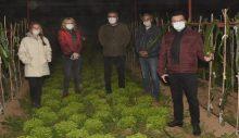 Kaymakam Şahin zirai don nöbeti tutan çiftçileri yalnız bırakmadı